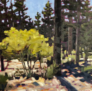 'At Belleview/Tallac'
