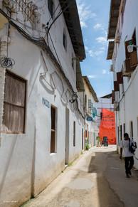 Zanzibar 50th Bday Jana-2743.jpg