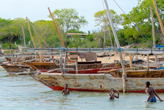 Zanzibar 50th Bday Jana-3117.jpg