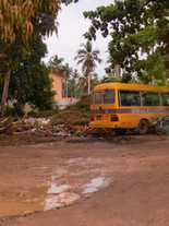 Zanzibar 50th Bday Jana-2780.jpg