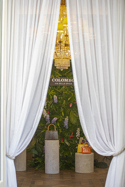 Colombo Samsung at the Ritz-0736.jpg