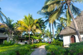 Zanzibar 50th Bday Jana-1763.jpg