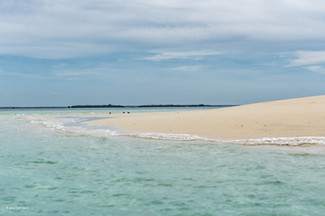 Zanzibar 50th Bday Jana-2810.jpg