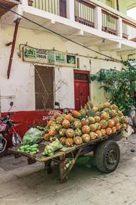 Zanzibar 50th Bday Jana-2620.jpg