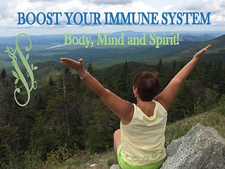 BOOST_Immune_System_BMS.jpg