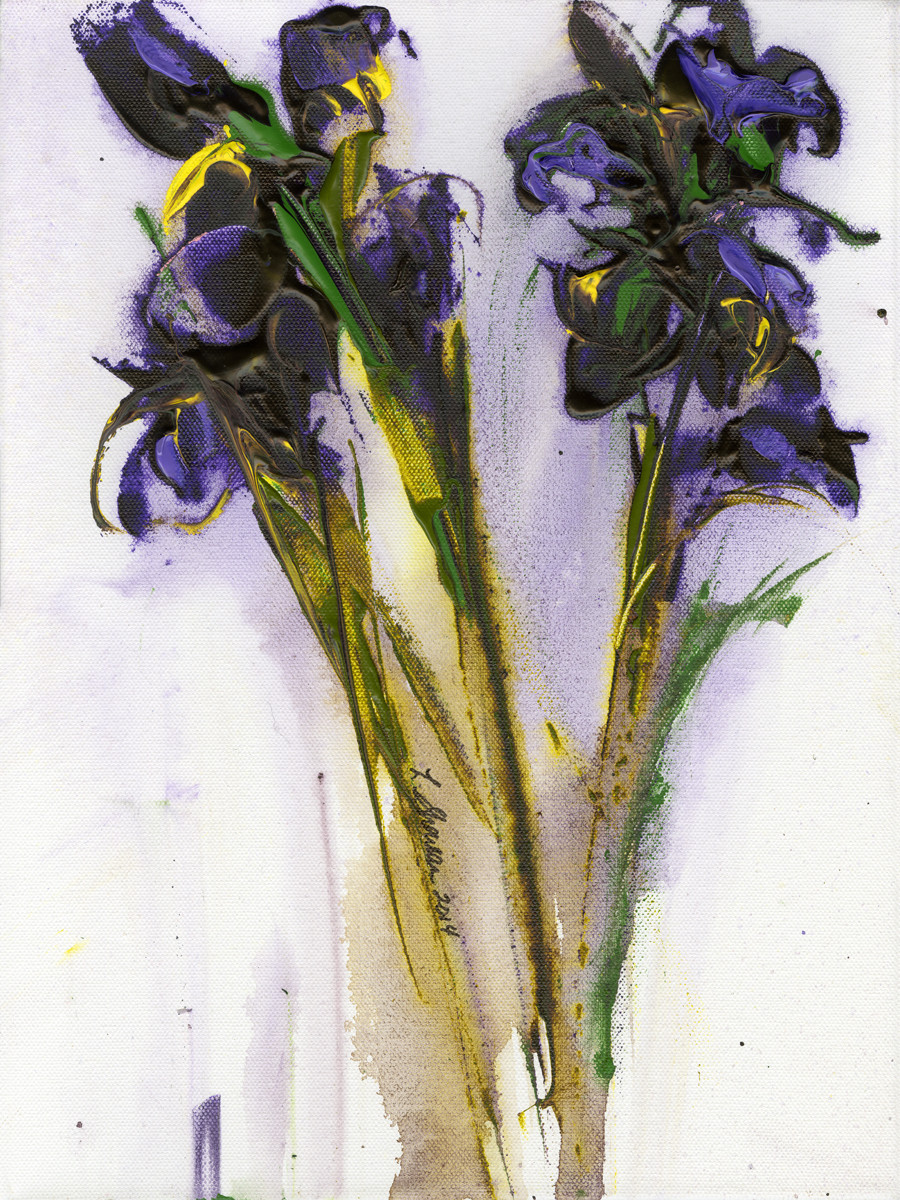 Irises in the Rain  16 x 20 $450