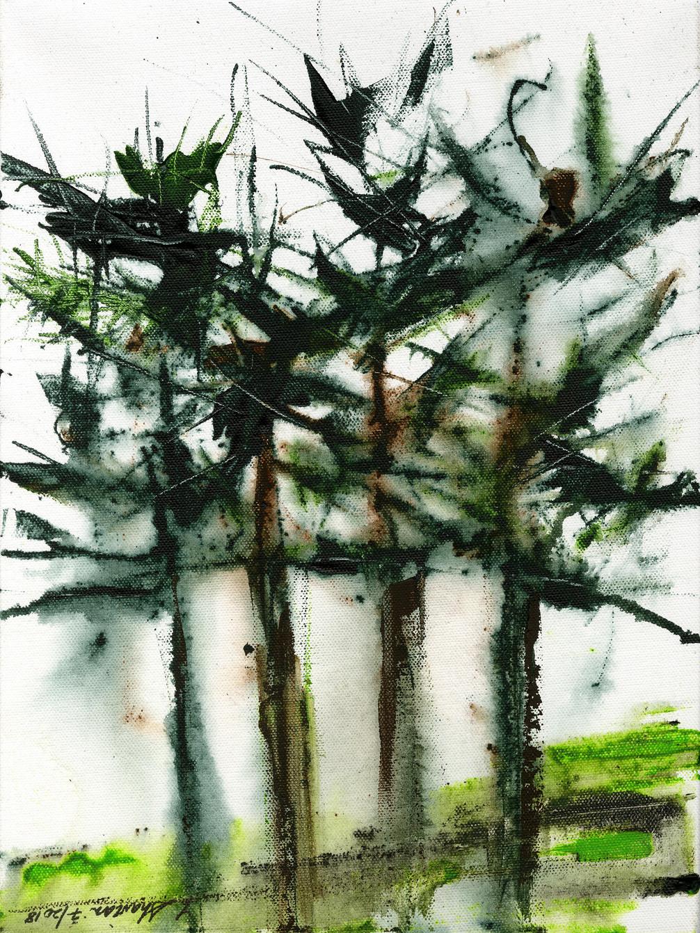 """Norfolk Pines 15""""w x 20""""h $450"""
