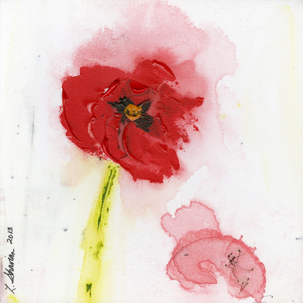 Windblown Poppy  18 x 18 $450