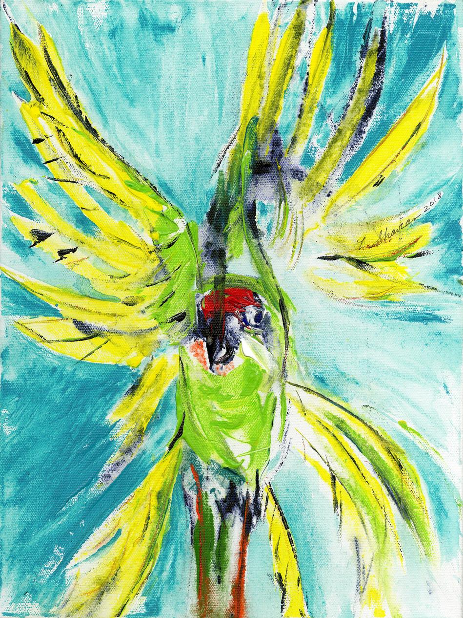 """Military Macaw  15""""w x 20""""h $450"""