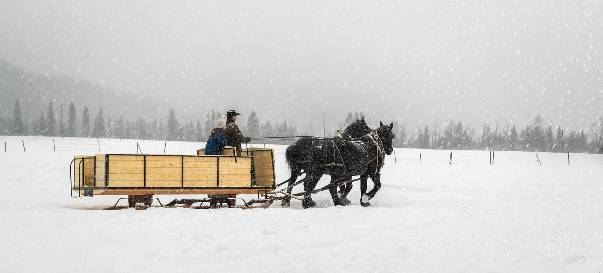 Chu Chua sleigh ride near Barriere, BC