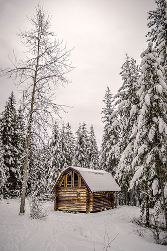 BC Cabin in the Woods