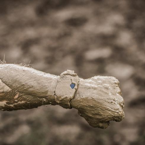 Tough Mudder for Sony | Rupert Fowler photography
