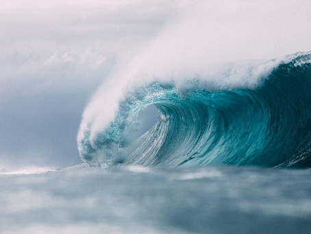 A Tsunami of Change: Riding Waves of Growth