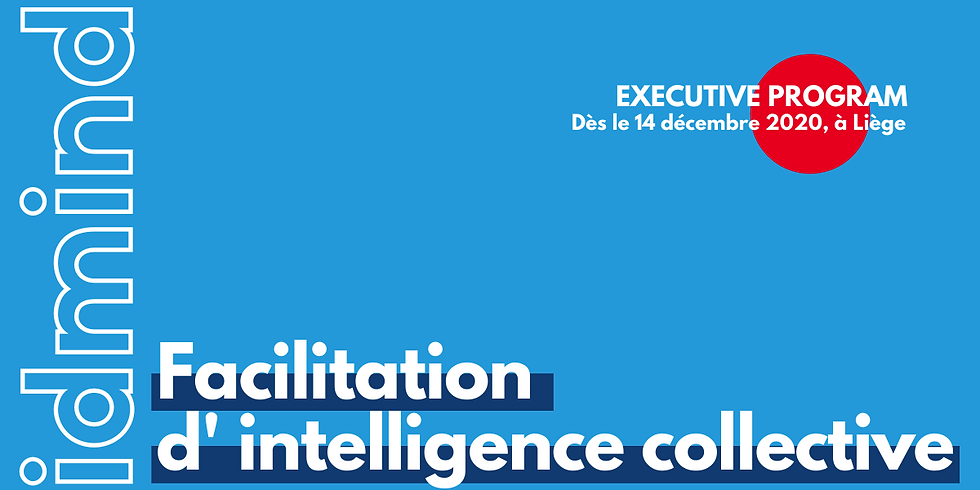 Executive Program: idmind