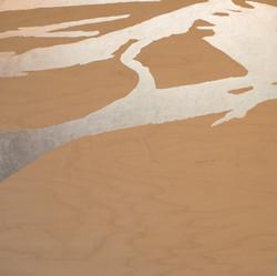 Desert Waterlines