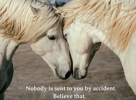 No Accidents, No Coincidences ...