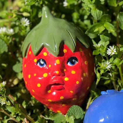 Strawberry Stevie