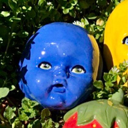 Blueberry Bernard