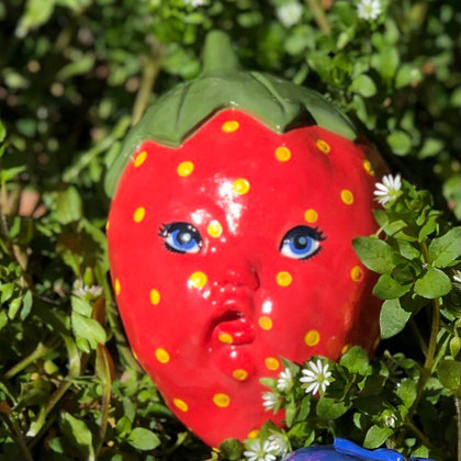 Strawberry Sheila