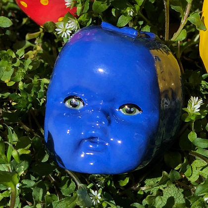 Blueberry Bruce