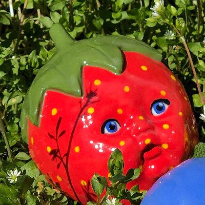 Strawberry Stella