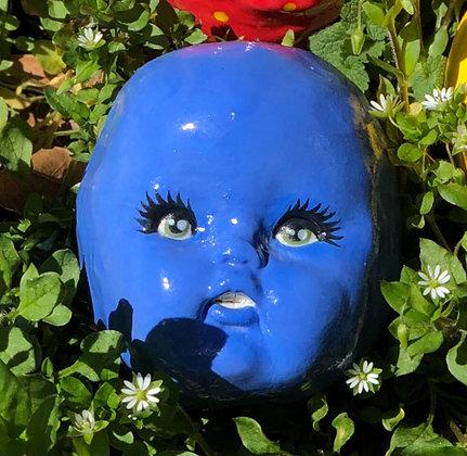 Blueberry Bianca