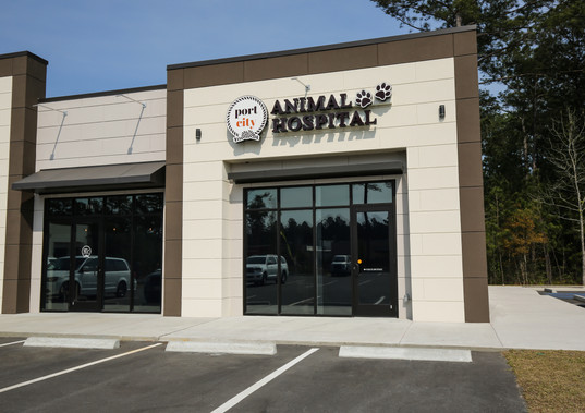 Port City Animal Hospital