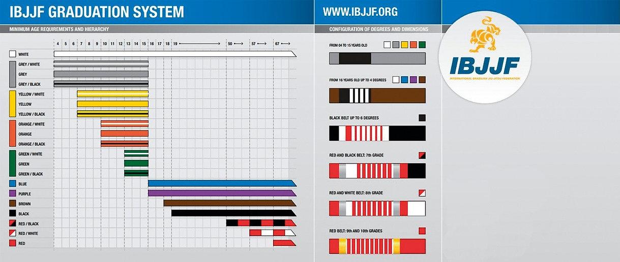 BJJ Gurtsystem_edited.jpg