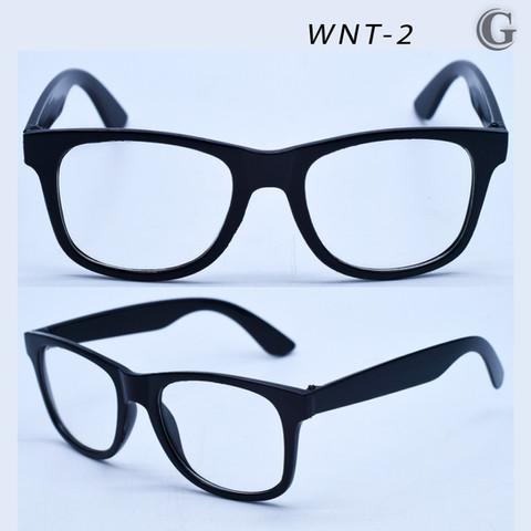 WNT-2.jpg