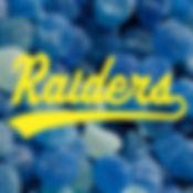 Raiders 2019 Team Logos-02-Blue.jpg