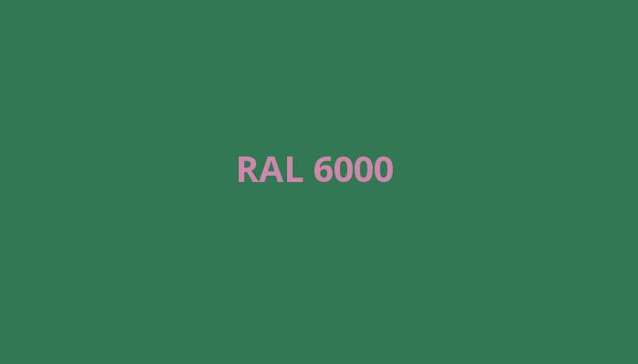 RAL-6000