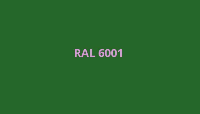 RAL-6001