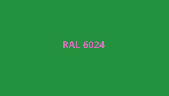RAL-6024