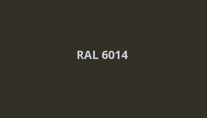 RAL-6014