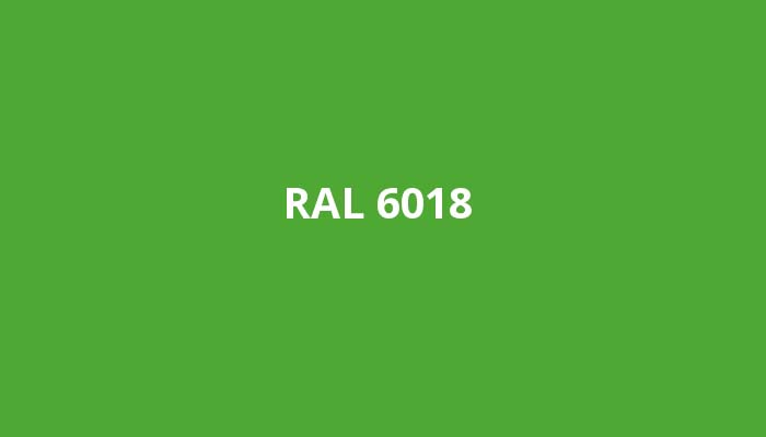 RAL-6018
