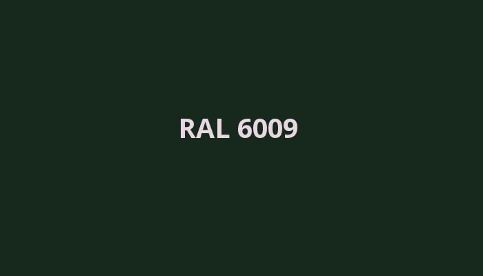 RAL-6009