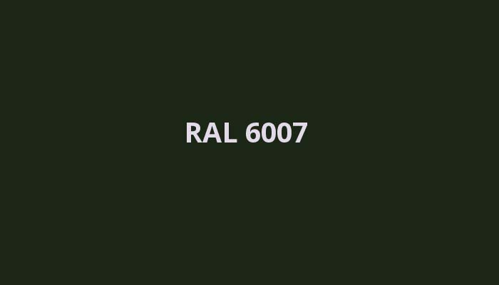 RAL-6007