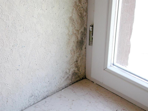 Ako si poradiť so zarosenými oknami a plesňami na stenách?