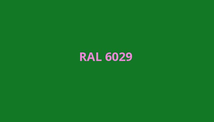 RAL-6029