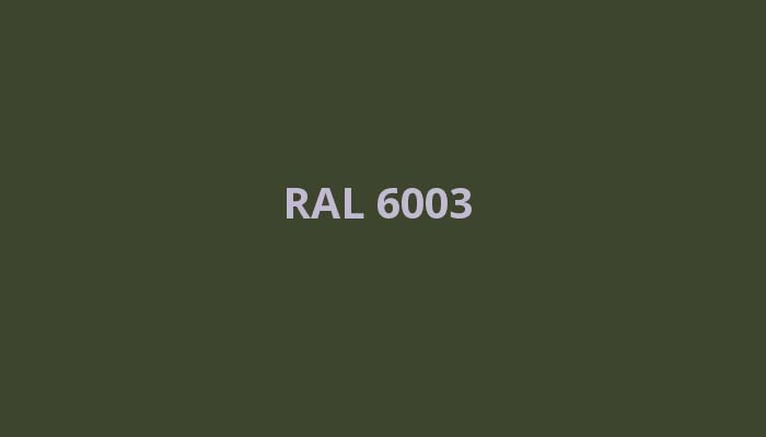 RAL-6003