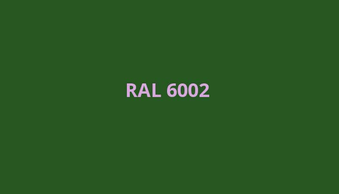 RAL-6002