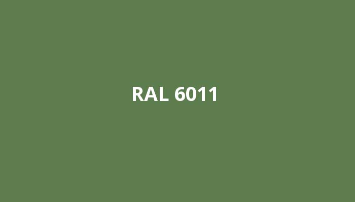 RAL-6011