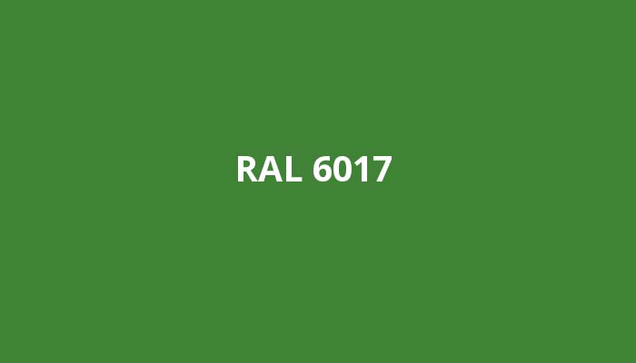 RAL-6017
