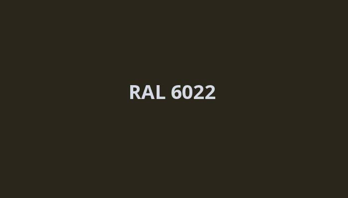 RAL-6022