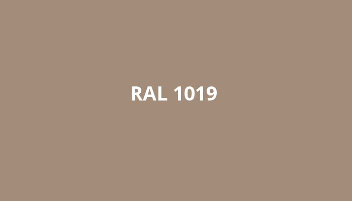 ral-1019