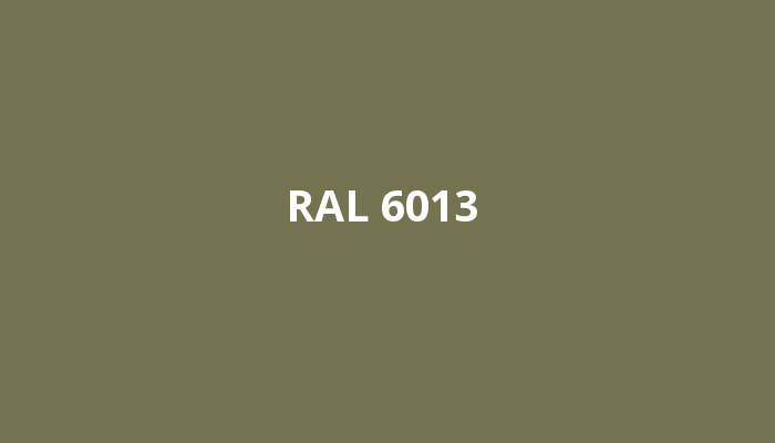 RAL-6013
