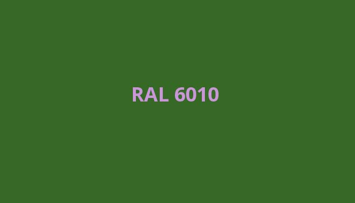 RAL-6010