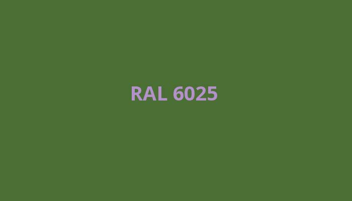 RAL-6025