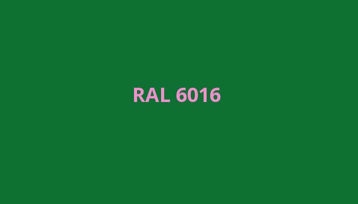 RAL-6016