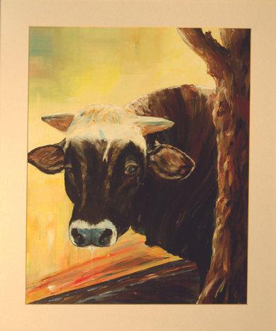 Stier von Benevello_63